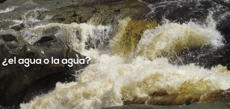 ¿El agua o la agua? Vamos a aprender español